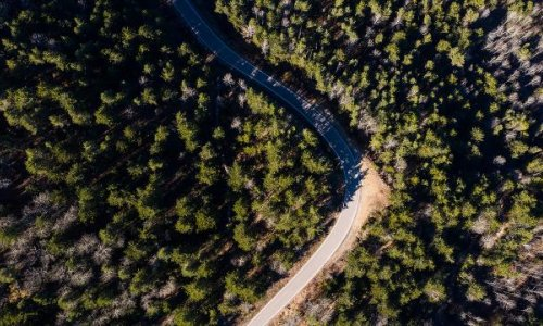 Nallıhan'daki ormanlık alan 'Milli Park' oldu