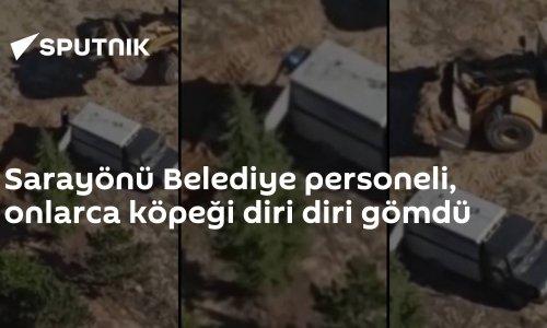 Sarayönü Belediye personeli, onlarca köpeği diri diri gömdü